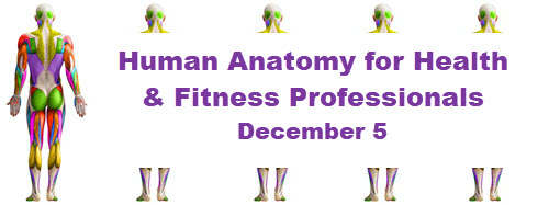 Kunsman: Human Anatomy 2020