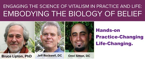 Lipton: Embodying the Science of Vitalism in Practice and in Life